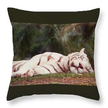 Sleeping White Snow Tiger Throw Pillow