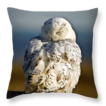 Sleeping Snowy Owl Throw Pillow by Steve McKinzie