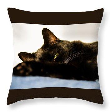 Sleeping With One Eye Open Throw Pillow by Bob Orsillo