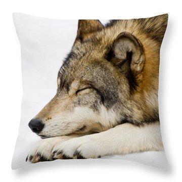 Sleeping Wolf Throw Pillow