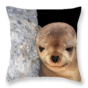 Sleepy Baby Sea Lion Throw Pillow by Susan Wiedmann