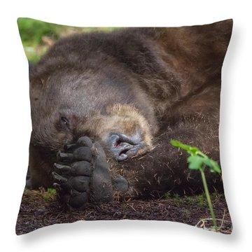 Sleepy Head Throw Pillow