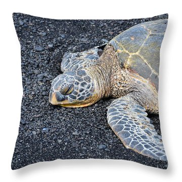 Throw Pillow featuring the photograph Sleepy Head by David Lawson