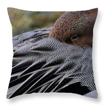 Sleepy Pintail Throw Pillow