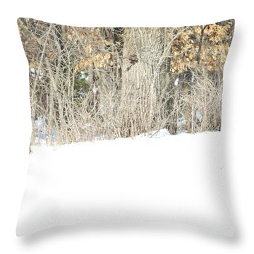 Throw Pillow featuring the photograph Sleepy Time by Dacia Doroff
