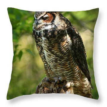Sleepy Time In The Forest Great Horned Owl  Throw Pillow by Inspired Nature Photography Fine Art Photography