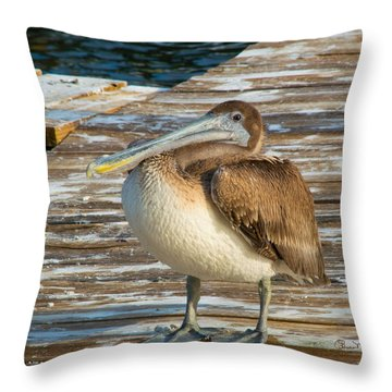 Sleepytime Pelican II Throw Pillow