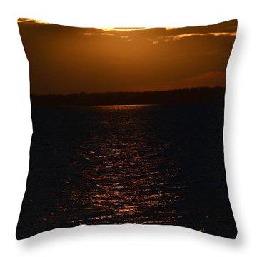Slice Of Sun Throw Pillow
