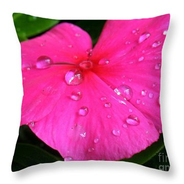 Sliders Throw Pillow by Patti Whitten