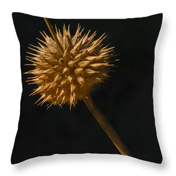 Sliding Down Throw Pillow