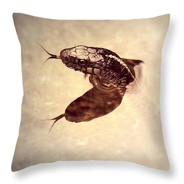 Throw Pillow featuring the photograph Slithering Reflections by Melanie Lankford Photography