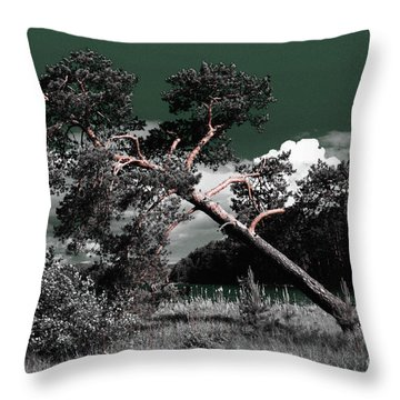 Sloping Pine Throw Pillow