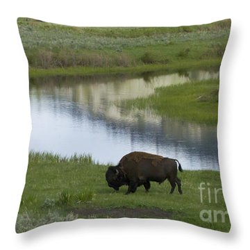 Slough Creek   #4111 Throw Pillow by J L Woody Wooden