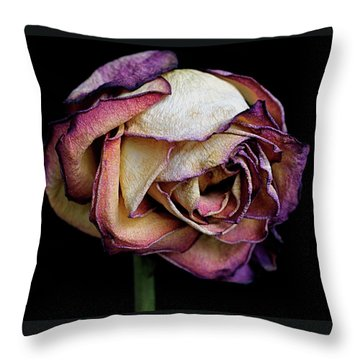 Slow Fade Throw Pillow by Rona Black