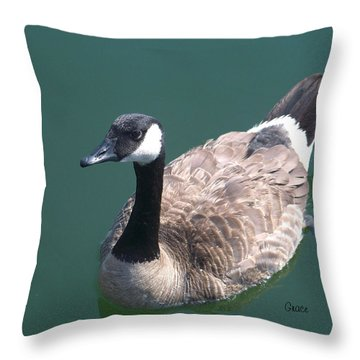 Slow Paddle Throw Pillow by Julie Grace