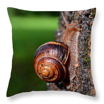 Slowly And Surely Throw Pillow