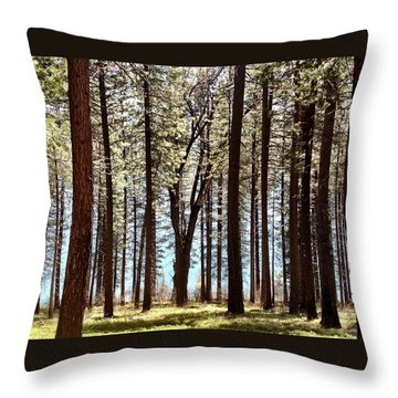 Sly Park Throw Pillow by Sherry Flaker