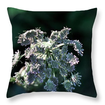 Throw Pillow featuring the photograph Small Flowers Makes One Big by Leif Sohlman