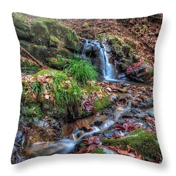 Small Fog Waterfall Throw Pillow