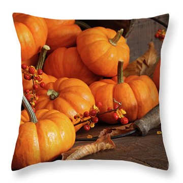Small Pumpkins With Wood Bucket  Throw Pillow by Sandra Cunningham