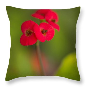 Small Red Flowers With Blurry Background Throw Pillow