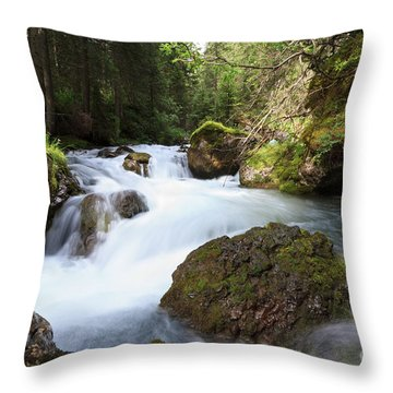 Throw Pillow featuring the photograph Small Stream by Antonio Scarpi
