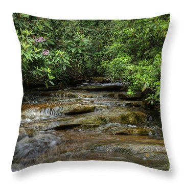 Small Stream In West Virginia With Mountain Laurel Throw Pillow by Dan Friend