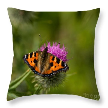 Throw Pillow featuring the photograph Small Tortoiseshell Butterfly by Liz  Alderdice