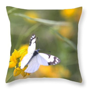Small White Butterfly On Yellow Flower Throw Pillow by Belinda Greb