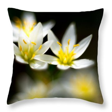 Throw Pillow featuring the photograph Small White Flowers by Darryl Dalton