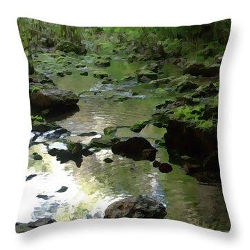 Smallin Creek Throw Pillow by Julie Grace