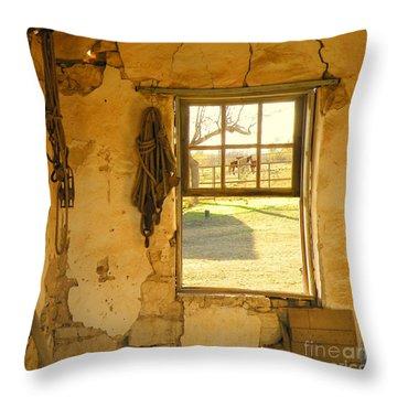 Smell Of Hay Throw Pillow by Joe Jake Pratt