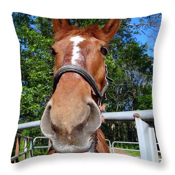 Throw Pillow featuring the photograph Smile by Ed Weidman