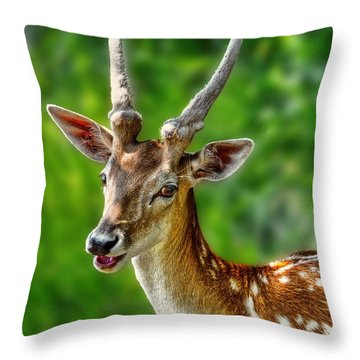 Smiling Deer Throw Pillow