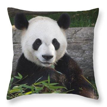 Smiling Giant Panda Throw Pillow by Lingfai Leung