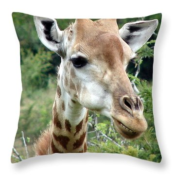 Smiling Giraffe Throw Pillow by Ramona Johnston