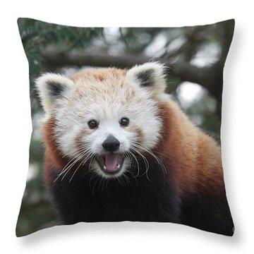 Smiling Red Panda Throw Pillow