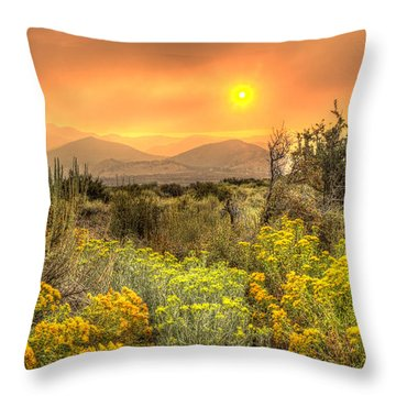 Smoke In The Air Throw Pillow by Dianne Phelps