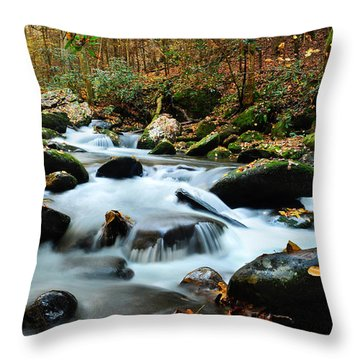 Smokey Mountain Creek Throw Pillow