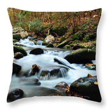 Smokey Mountain Creek Throw Pillow by Donald Fink