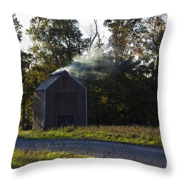 Throw Pillow featuring the photograph Smoking Tobacco by Amber Kresge