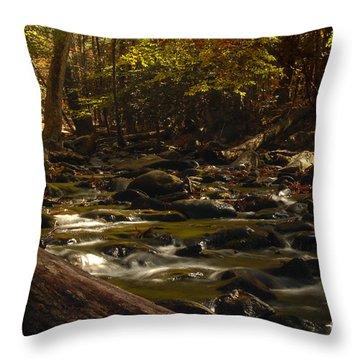 Smoky Mountain Stream Throw Pillow by Patrick Shupert