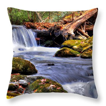 Smoky Mountain Waterfall Throw Pillow