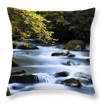 Smoky Stream Throw Pillow