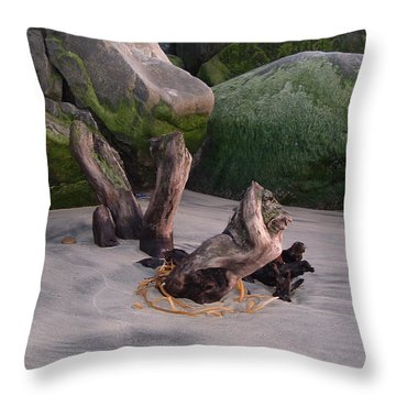 Smooth Throw Pillow