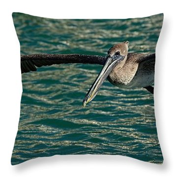 Smooth Glide Throw Pillow by Pamela Blizzard