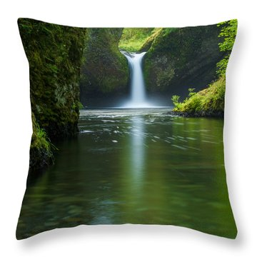 Smooth Throw Pillow by Patricia Davidson