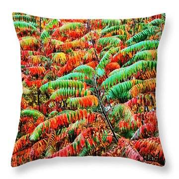 Smooth Sumac Fall Color Throw Pillow by Thomas R Fletcher