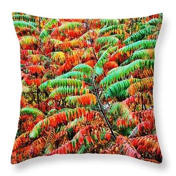 Smooth Sumac Fall Color Throw Pillow by Thomas R Fletcher