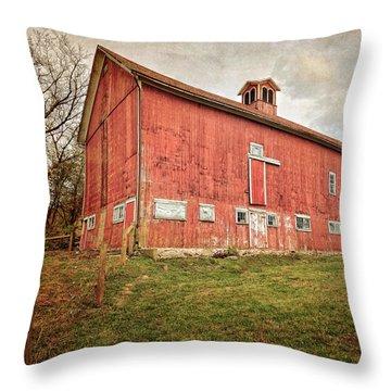 Smyrski Farm  Throw Pillow by Bill Wakeley